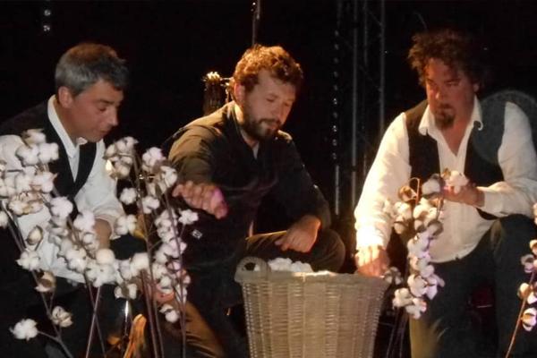 Les bedaines de coton